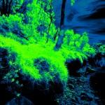 DSC06251_30_DIFF_greenfireblue-sm